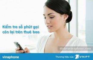 Cách kiểm tra số phút gọi Vinaphone