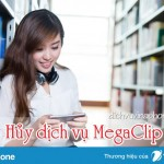 Hướng dẫn cách hủy dịch vụ MegaClip Vinaphone qua 9017