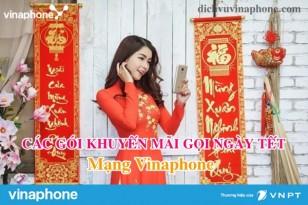 Cac-goi-khuyen-mai-goi-noi-mang-tet-Vinaphone