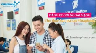 Dang-ky-goi-ngoai-mang-tra-sau-Vinaphone