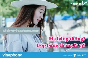 ha-bang-thong-va-bop-bang-thong-la-gi